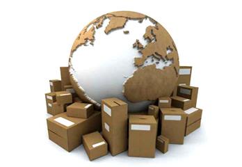 Focus- Performance Logistique : outil de développement commercial de l'entreprise,  Paimpol