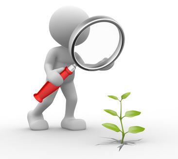 Focus IAA/Cosmétique - Comment développer une marque?