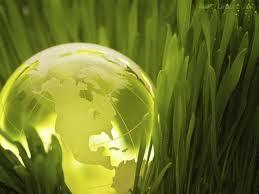 Agroalimentaire, cosmétique, algues … Participez aux événements 2015 !