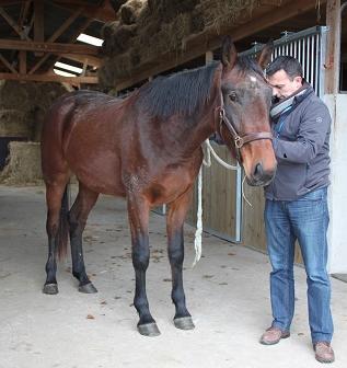 NL Nutrition lance la méthode Expertise Equine (E2)