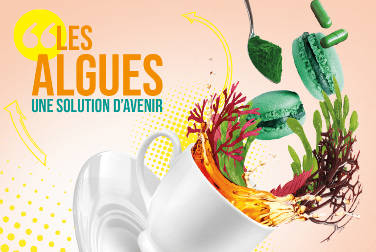 U'Cook Innovation - Une 4ème édition dédiée aux algues